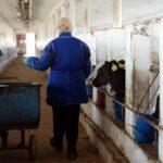 В «Единой России» требуют сохранить укороченную    рабочую неделю для женщин в сельской местности