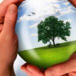 Реализация нацпроекта «Экология» позволит обеспечить эффективное обращение с отходами производства и потребления в Смоленской области