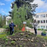 В Пригорской школе появился «зеленый островок»
